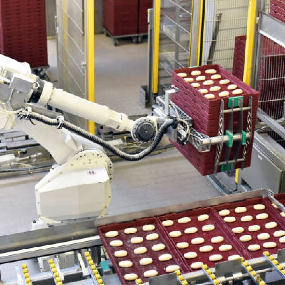 industrial production of bakery products on an assembly line - technology and machinery in the food factory